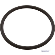 O-Ring, Bottom-Model 320/322, In Line, Rainbow/ Pentair(R172319)