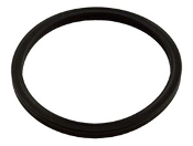Diffuser O-ring, Square, Challenger, Pentair (355030)